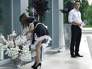 Maid Stake